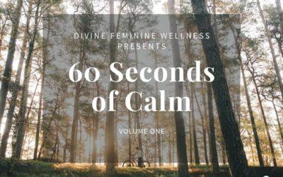60 Seconds of Calm V.1