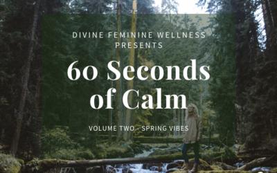 60 Seconds of Calm V.2 – Spring Vibes